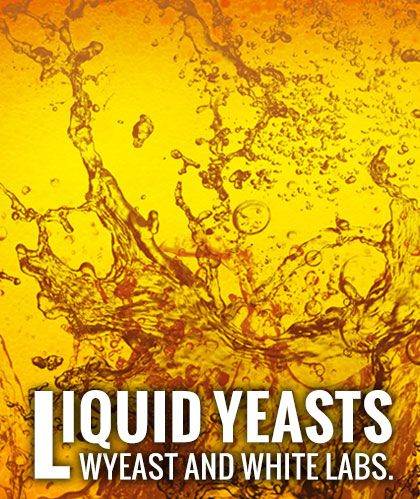 Liquid Yeasts